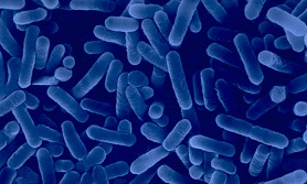 Legionella Awareness Course